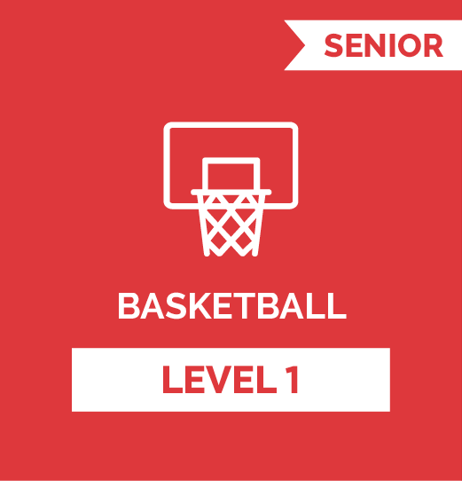 Online Strength Training basketball