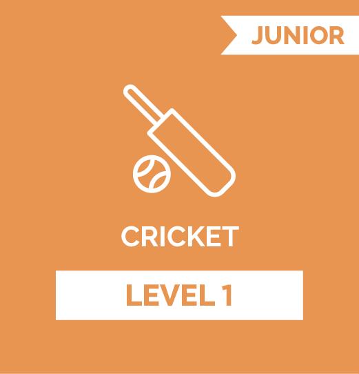 online program cricket