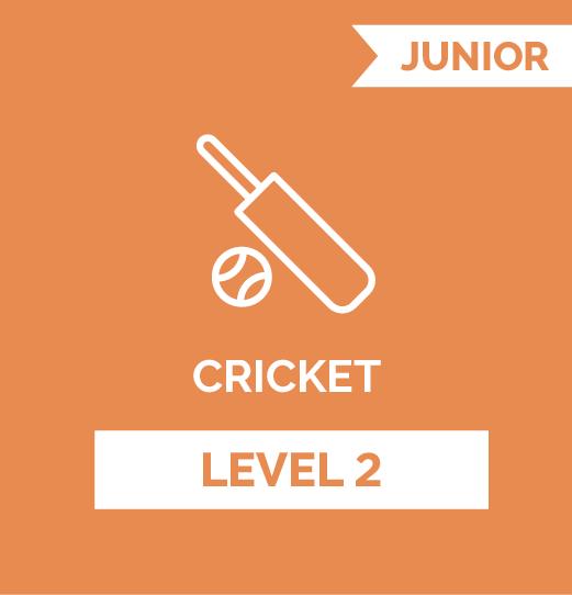 online cricket program