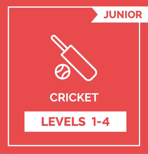 Online Strength Training Cricket