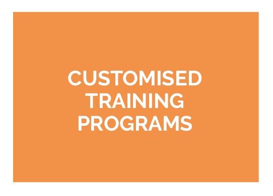 Custom Online Sports Training Program