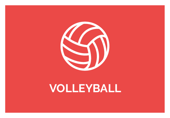 Online Strength Training Volleyball